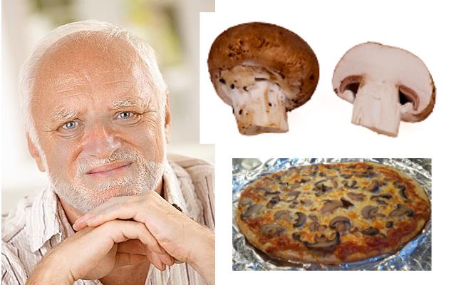 pizza harold