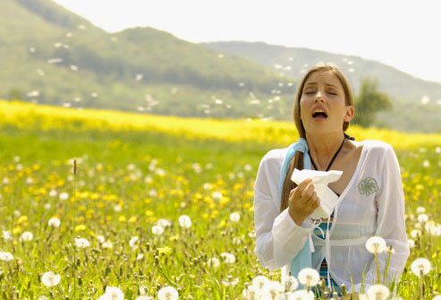 getty_woman_sneezing_in_flowering_meadow.jpg