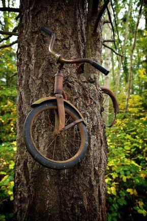 1914 war bike graft.jpg