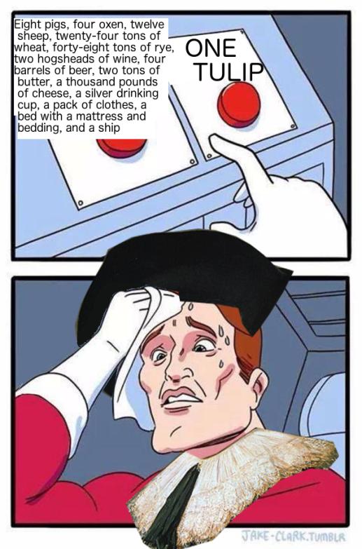 one tulip hard choice